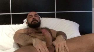 Italian hairy bear