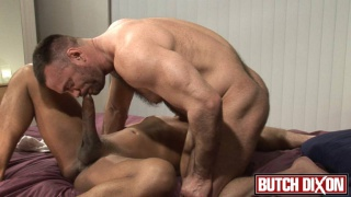 Beefy and hairy bodybuilder gets his ass fucked