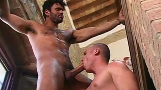 Dark Italian stallion fucks bubble butt stud
