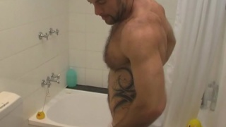 Bear in the shower