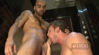 Hayden Colby Sucking Johnny Venture