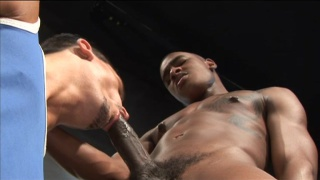 Servicing Black Cock in Toilet