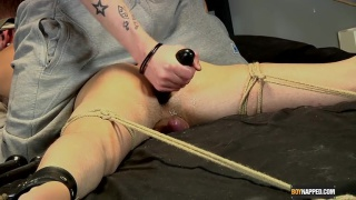 Tied Up and Ass Fucked