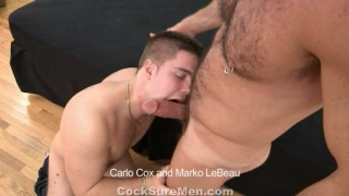 Marko LeBeau Servicing Carlo Cox