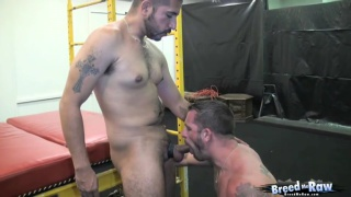 Hung Top Sebastian Rio BB Morgan Black