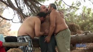 3 Big Bears Fucking in the Spanish Woods