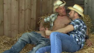 Hairy horny cowboys suck uncut cock