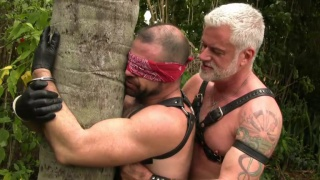 blindfolded leather bear serves is grey-haired daddy