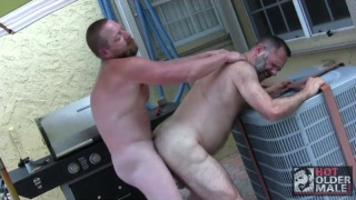 fat cock for hairy bear hole