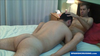 sexy young bear giving blowjob