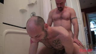 furry bald bottom gets raw fucked