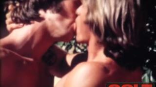 Erron & Ledermeister - vintage COLT
