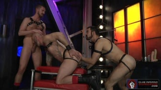 3 leather fist pigs going at it