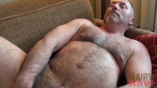 bear man jacking off on his big round belly