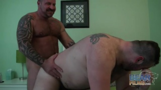 muscle bear fucks big-bellied bottom