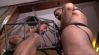 max toro cages his slave martin mazza
