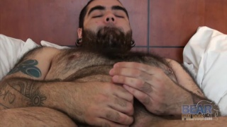 bear with beard and belly jacking off