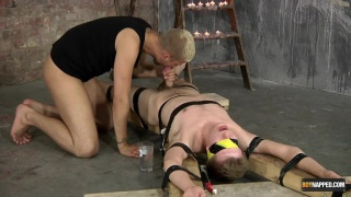 master sucks off his bound sub