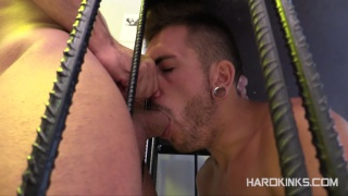 master antonio finds his new pup locked in his cage