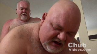 bald chub gets fucked doggy style
