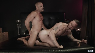 Damien Crosse and Dominique Hansson have chemistry