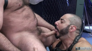 amir badri gets his ass drilled bare