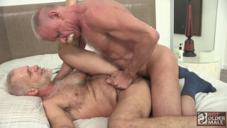 hot daddies in passionate bareback scene