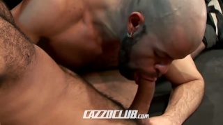 horny bald guy looking for the next cock