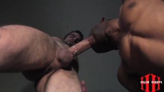 cocksucker rogan hardy blows heavily-inked dude