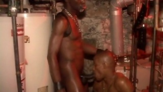 lord knight bangs damon west with his 10 inches