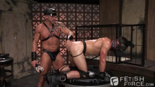 puppy play with Mike DeMarco & Dallas Steele