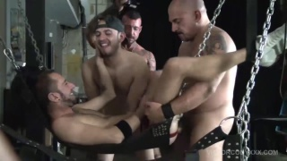 ray dalton in Pig Week Gorilla Porn Sex Orgy 5