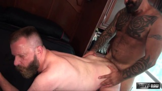 Marc Angelo barebacks bearded daddy Canadad