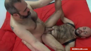 hairy bear Viktor karmen fucks Alex mad