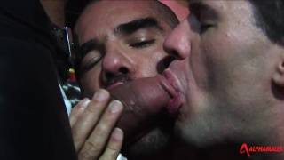 leather men sucking and fucking in a bar