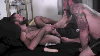 furry stud Amir gets dildo fucked