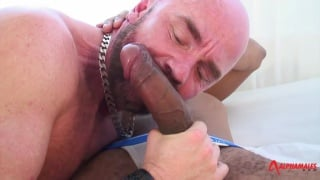 hung black stud fucks bald daddy's ass