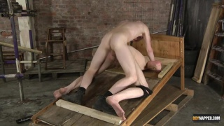 twink boy tied to a wooden rack and fucked