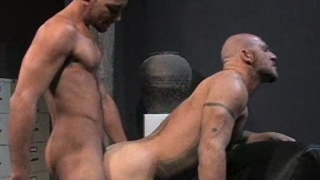 Fucking a hairy guy's hole