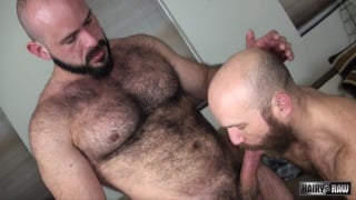 hairy Fuck buddies Nixon Steele and Marco Bolt