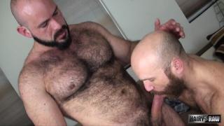hairy Fuck buddies Nixon Steele and Marco Bolt