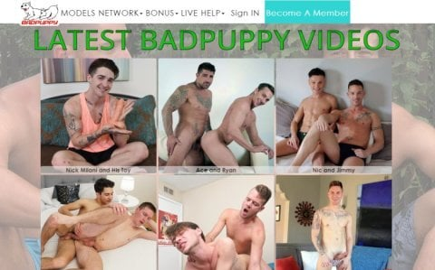 all videos uploaded by badpuppy