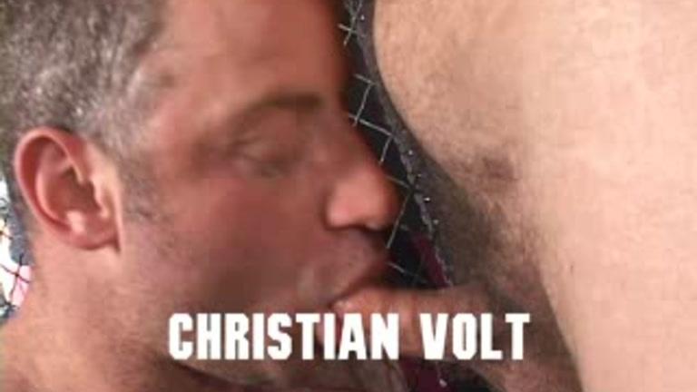 christian-volt-bear