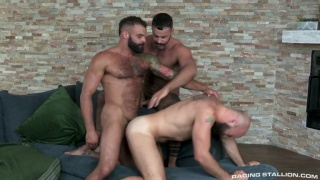 three bearded men fucking