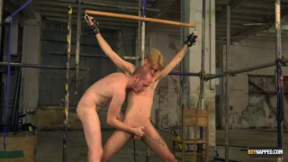 slim blond restrained for a blowjob session