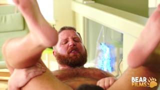 bear with a ginger beard gets fucked on his back