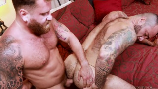 latino bear can barely take the pounding this bearded man is giving