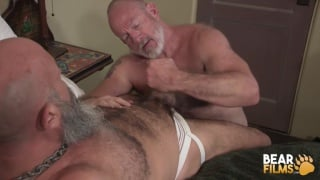 daddy with grey beard gulps another daddy's stiff cock