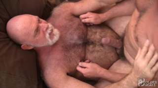 two hairy daddies taking turns on each other's hungry holes