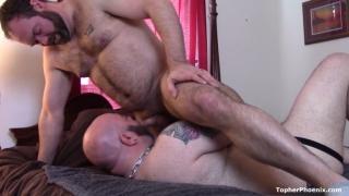 hairy bear throats fucks a bald man